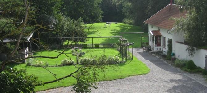 Bäcks gård
